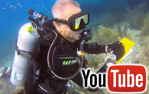 Diver Video You Tube